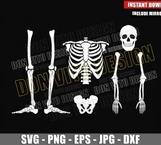 Human Skeleton Parts (SVG dxf png) Skull Chest Hand Bones Cut File Cricut Silhouette Vector Clipart - Don Vito Design Store